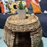 Furniture Rattan pet house/Coffee Table buy local